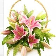 Магазин цветов Cvetok.by Цветочная корзина «Нежная лилия»