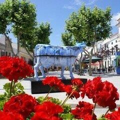 Туристическое агентство Велл Аўтобусны тур у Iспанию «Усмешка Кармэн»