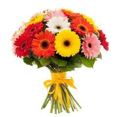 Магазин цветов Фурор Гербера