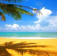 Туристическое агентство Мастер ВГ тур Пляжный aвиатур в Италию, Лидо ди Езоло, Mayer 3*