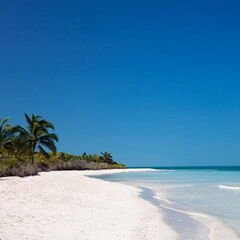 Туристическое агентство EcoTravel Пляжный авиатур на Кубу, Кайо-Коко, Memories Flamenco Beach Resort  5*