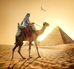 Туристическое агентство VIP TOURS New Year в Египте из Минска