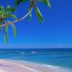 Туристическое агентство InnTourLab Пляжный aвиатур в Таиланд, Pattaya Park Beach Resort 3*