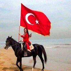 Туристическое агентство География Пляжный авиатур в Турцию, Кушадасы, Aria Claros Beach & Spa Resort 5*