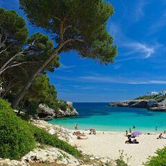 Туристическое агентство АлиВия Трэвел Пляжный aвиатур в Испанию, Майорка, CHECKIN PINEDA 3