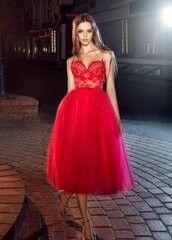 Вечернее платье Papilio Вечернее платье 223