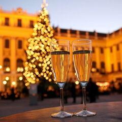Туристическое агентство Боншанс Автобусный тур «Новый год в Вене»
