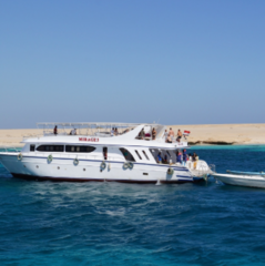 Горящий тур Мастер ВГ тур Пляжный aвиатур в Египет, Шарм-Эль-Шейх, Club Reef 4*