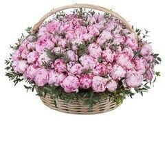 Магазин цветов Cvetok.by Цветочная корзина «Розовый пион 301 шт»