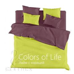 Подарок Голдтекс Сатиновое двухстороннее постельное бель «Color of Life» Лайм с Корицей
