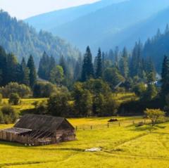 Туристическое агентство ДЛ-Навигатор Экскурсионный тур «Отдых в Карпатах»