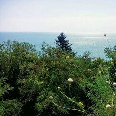 Туристическое агентство VIP TOURS Пляжный тур в Болгарию, район Золотых Песков, Tango 2*