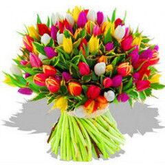 Магазин цветов Фурор Букет «101 тюльпан»
