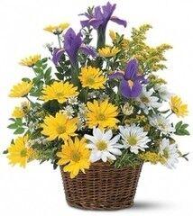 Магазин цветов Cvetok.by Цветочная корзина «Милашка»