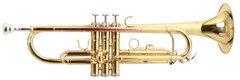 Музыкальный инструмент Roy Benson Труба TR-101 (RB701.050)