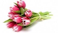 Магазин цветов Планета цветов Букет из тюльпанов №2