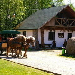 Туристическое агентство Джой тур Агро-тур в туристический комплекс «Коробчицы»