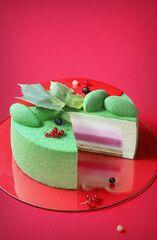 Торт DOLCE Муссовый торт «Лес Энди Уорхола»