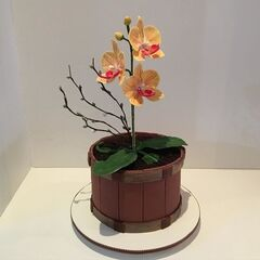 Торт Заказторта.бай Тематический торт №5