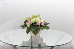 Магазин цветов Lia Букет из живых цветов в горшке бежевый