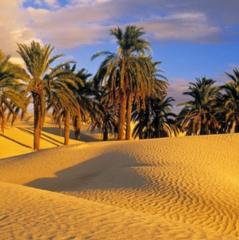 Туристическое агентство Голд Фокс Трэвел Пляжный aвиатур в Тунис, Hotel Nesrine 4*