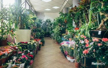 Доставка цветов беларусь брест — 12