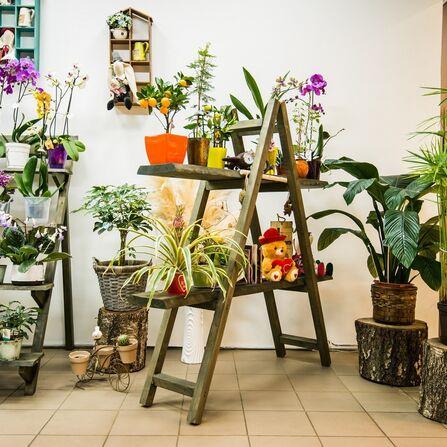 Минск доставка цветов флора круглосуточно — photo 14