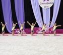 Международный турнир по эстетической групповой гимнастике «Сильфида-2019», фото № 3