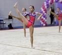 Международный турнир по эстетической групповой гимнастике «Сильфида-2019», фото № 29