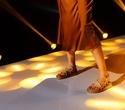 Показ MUA | Brands Fashion Show, фото № 64