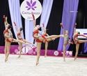 Международный турнир по эстетической групповой гимнастике «Сильфида-2019», фото № 48