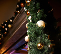 Рождество в ресторане Falcone, фото № 51