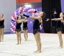 Международный турнир по эстетической групповой гимнастике «Сильфида-2019», фото № 47