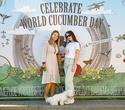 World Cucumber Day – 2021, фото № 531