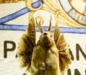 Октоберфест, фото № 129