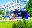 День Рождения лучшего парка: Dreamland 10 лет, фото № 40