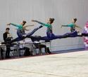 Международный турнир по эстетической групповой гимнастике «Сильфида-2019», фото № 56