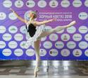 III Международный конкурс искусств «Зорныя кветкі — 2018», фото № 78