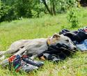 Поездка Relax.by в Шанти Дом, фото № 108