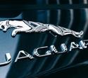 Презентация Jaguar F-Pace, фото № 82