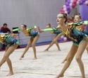 Международный турнир по эстетической групповой гимнастике «Сильфида-2019», фото № 53