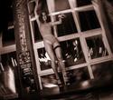 Пятница развратница в баре «Острые козырьки», фото № 30