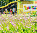 День Рождения лучшего парка: Dreamland 10 лет, фото № 54