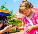 День Рождения лучшего парка: Dreamland 10 лет, фото № 6
