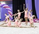 Международный турнир по эстетической групповой гимнастике «Сильфида-2019», фото № 44