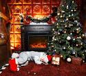 Рождество в ресторане Falcone, фото № 55