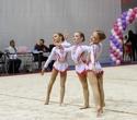Международный турнир по эстетической групповой гимнастике «Сильфида-2019», фото № 20