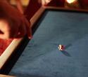 Премьера клубной игры «Счастливый рейс», фото № 48