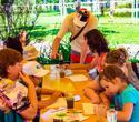 День Рождения лучшего парка: Dreamland 10 лет, фото № 49