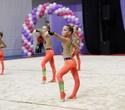 Международный турнир по эстетической групповой гимнастике «Сильфида-2019», фото № 15